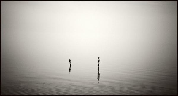 Salton Sea, California © Stéphane Louis, 2008