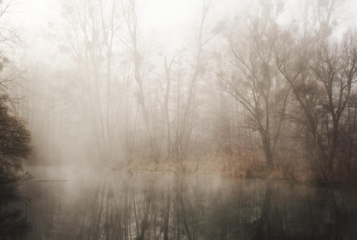 Paysage d'hiver © Stéphane Louis, I. 18