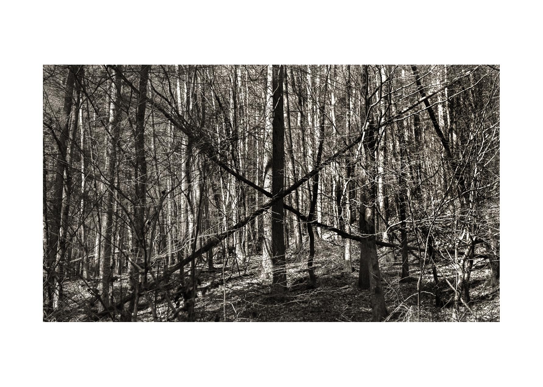 Paysage-Artifice #3 © Stéphane Louis, 2018