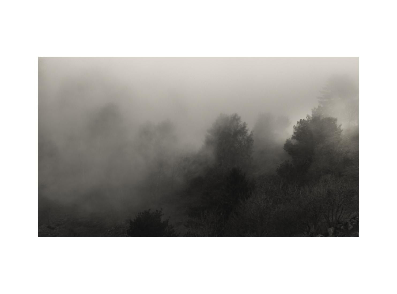 Vosges © Stéphane Louis, 2016