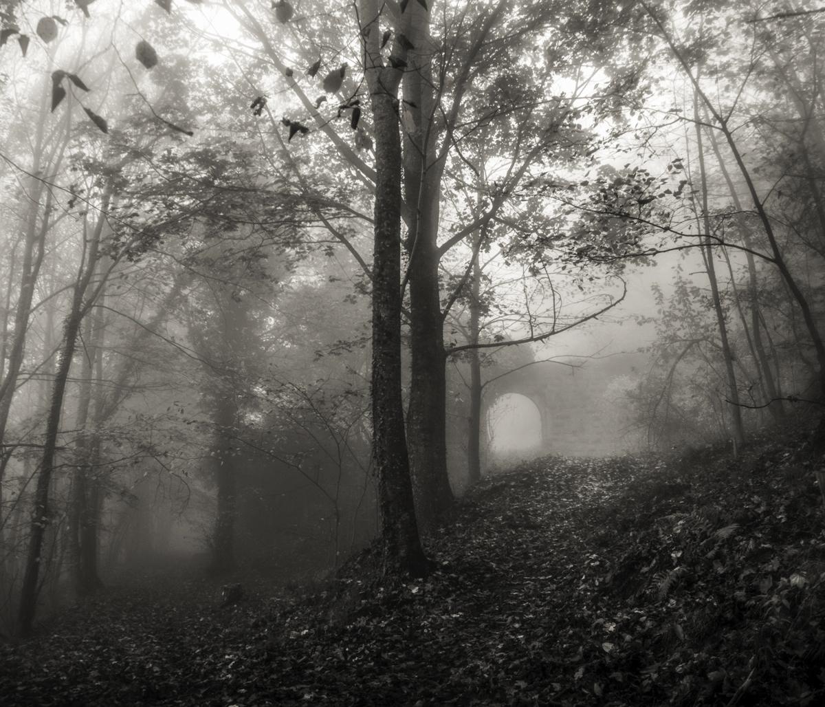 Dans les brumes © Stéphane Louis, XI. 17