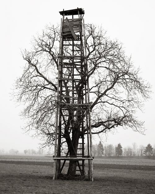 Hochsitz, 2016 © Stéphane Louis
