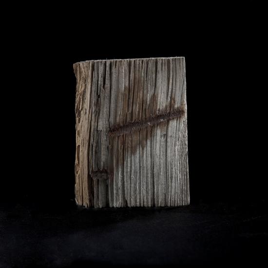 Fragment de bois — Forst Zinna, 2011 © Stéphane Louis, 2014